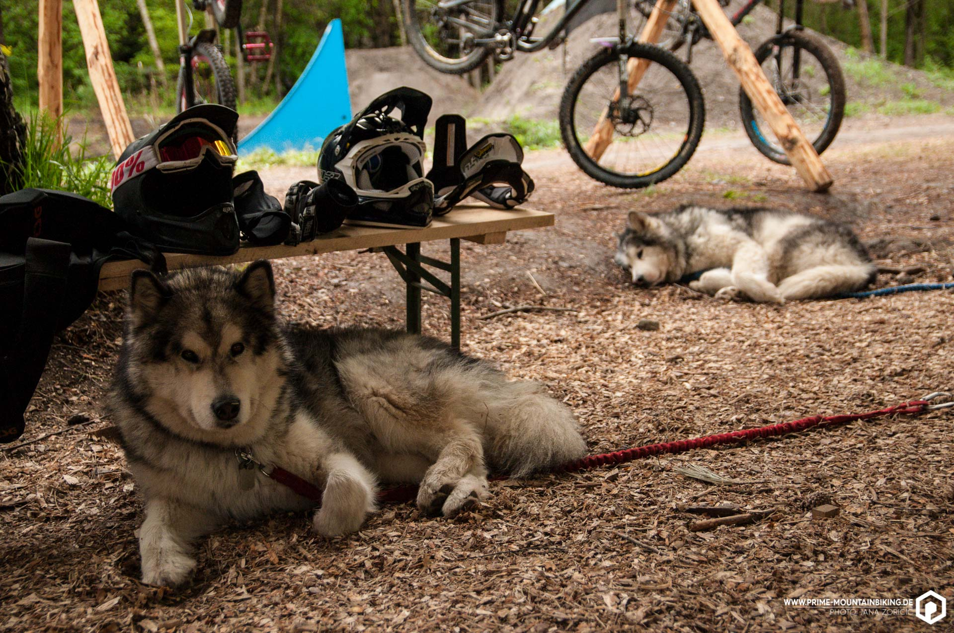 Evo Bikepark