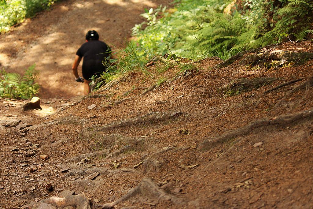 In den Level 2 Kursen stoßen die Übungen teilweise bis in den Grenzbereich von Bike und Biker vor.