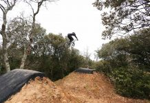 Forrest Jump Pumptrack