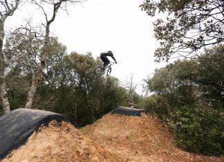 Forrest Jump Pumptrack