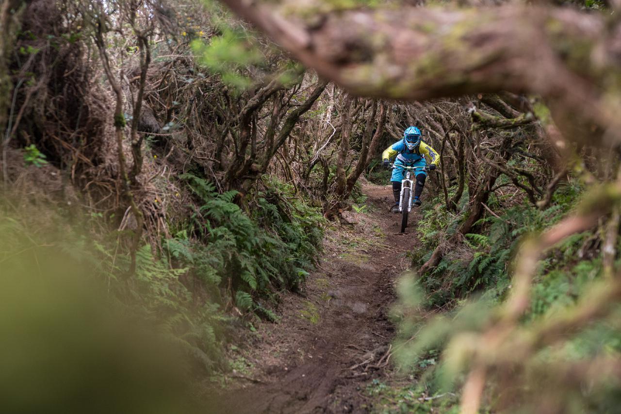 Madeira ist eines der Highlights im Angebot von Triberg Bike Reisen.