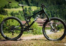 Pole Bikes Evolink 150
