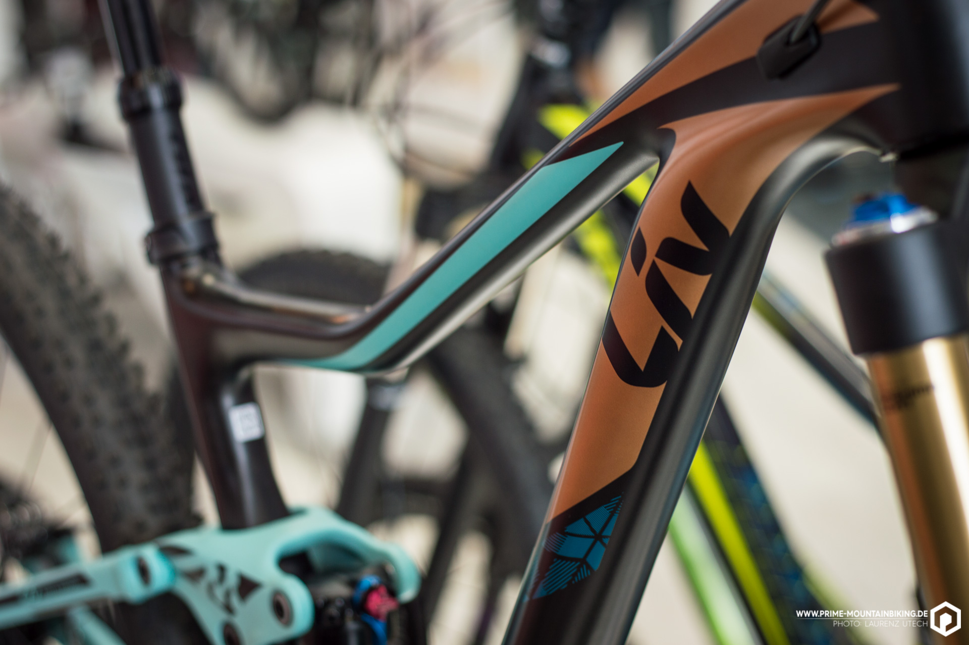 ... und an den Bikes der Ladys-Brand Liv.