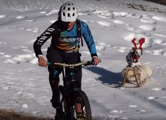 Ines Thoma Just a Normal Winter Ride