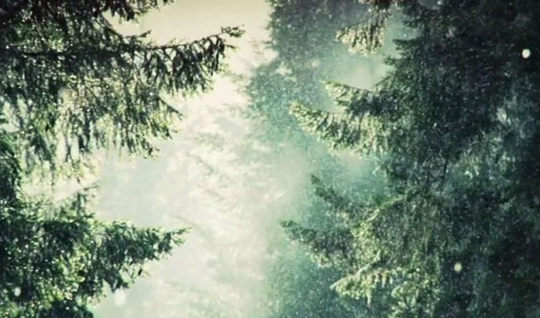 winter_edit_island_larock
