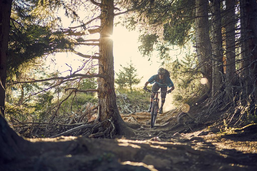 Ein Mix aus Flow- und Naturtrail erwartet Mountainbiker auf dem Frommestrail.