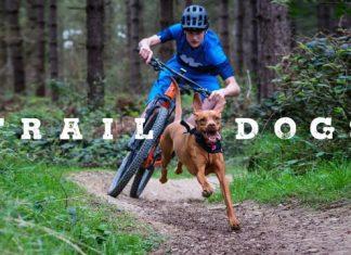Traildog Ruby Morvelo Blog Video01