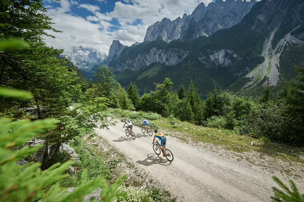 Beim All-Mountain-Marathon geht's ganz modern nicht nur über öde Forststraßen bergab sondern vor allem über technisch fordernde und spaßige Singletrails.
