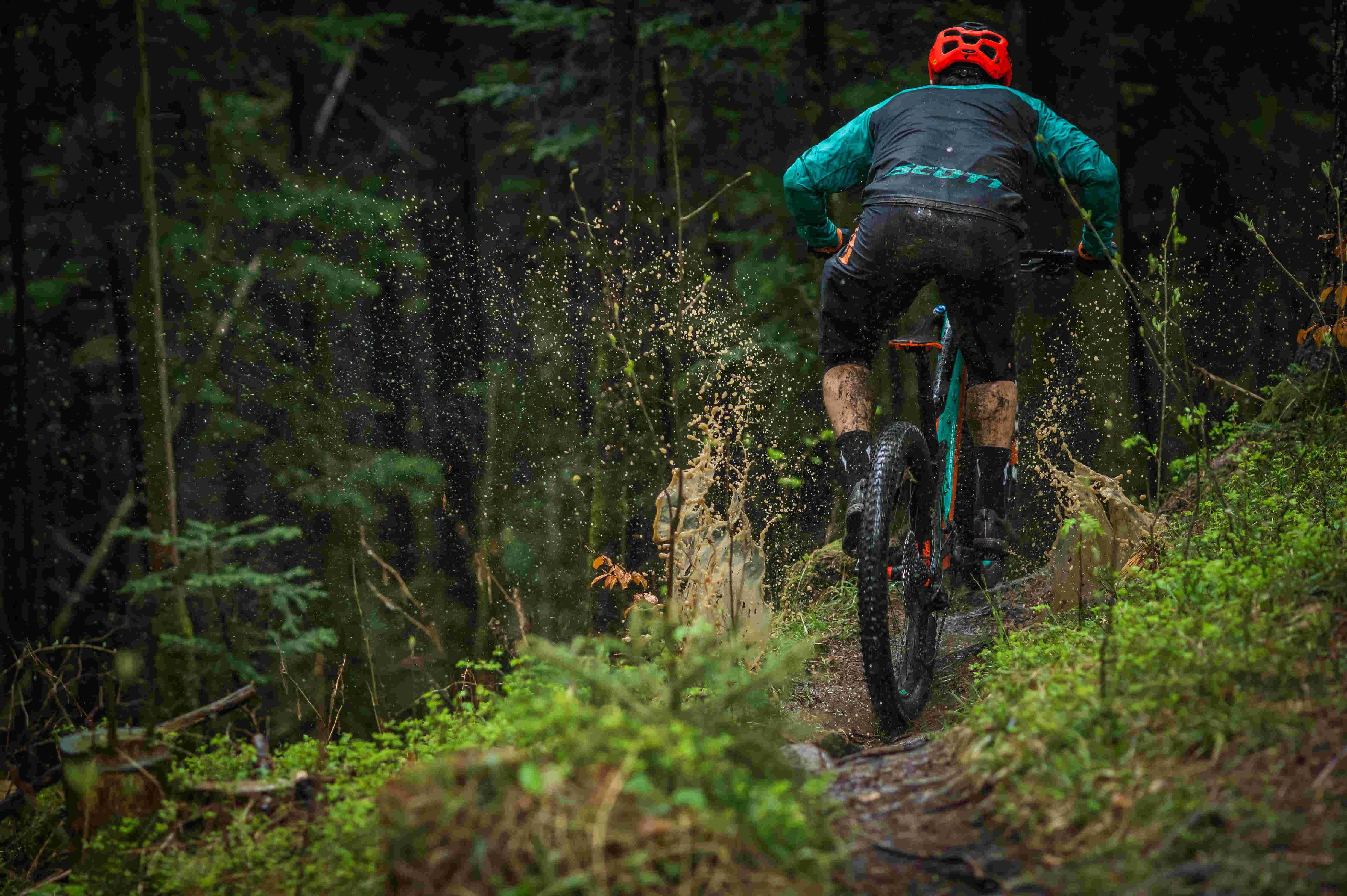 Chasing Trail