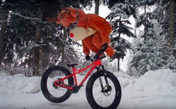 Manuel Scheidegger alias Rudolph