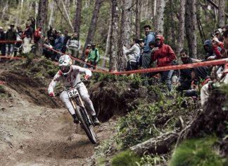 Weltmeister Loic Bruni