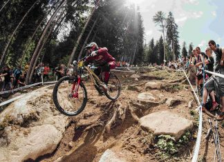 DH World Cup Val di Sole