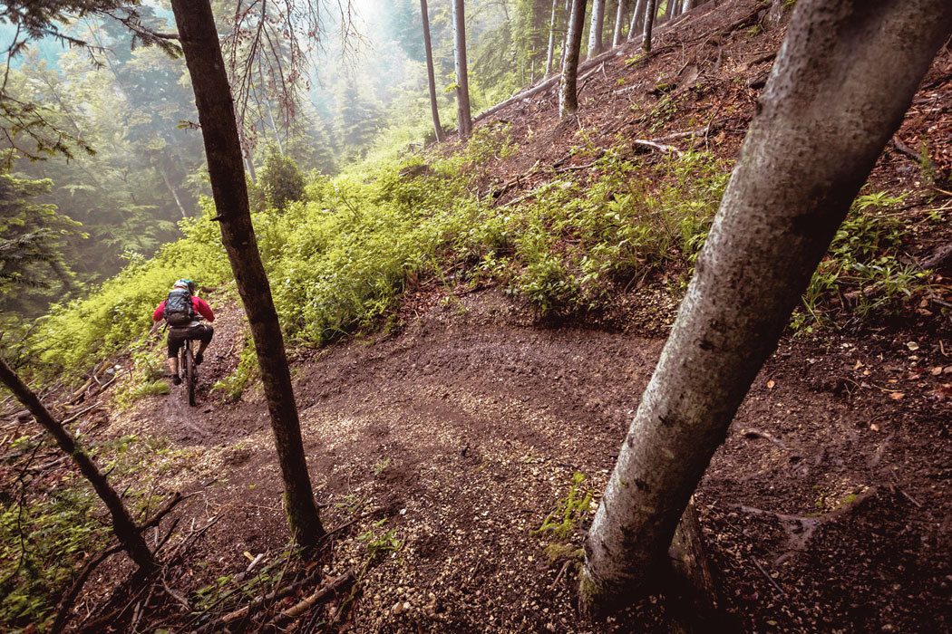 BOLD Cycles wird Titelsponsor