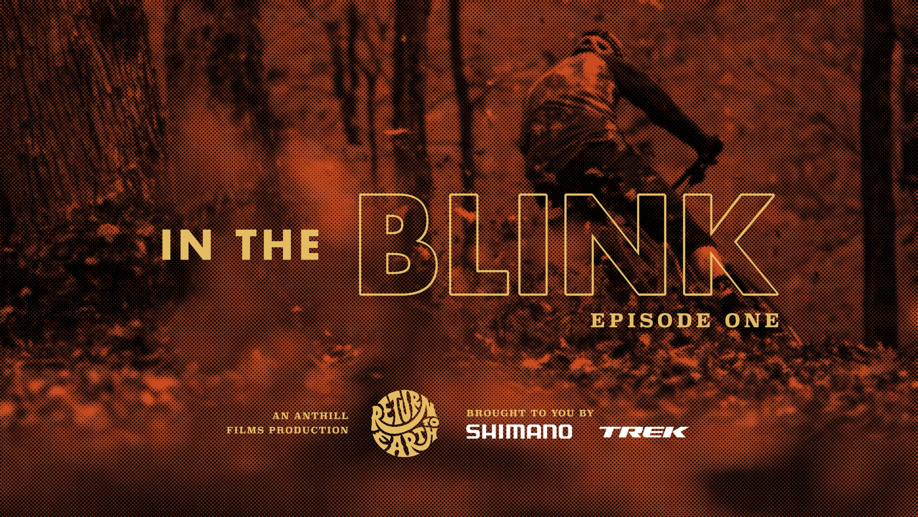 In the Blink