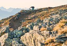 Bikeregion Serfaus-Fiss-Ladis
